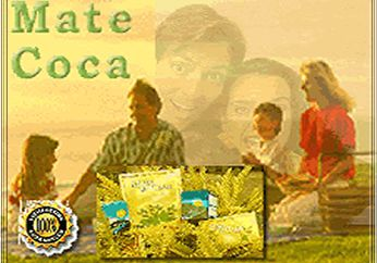 Inca Tea: a wholesome medicinal beverage made from the leaves of the coca plant